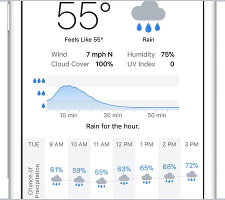 rain graph