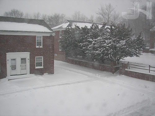 winter storm demi